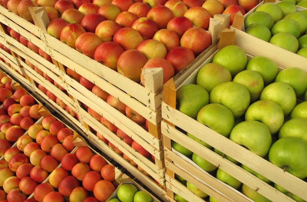 Az EU kampányt indít az uniós élelmiszerek népszerűsítésére
